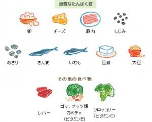 良質なタンパク質