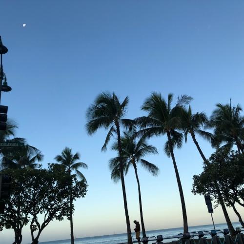 ハワイから帰ってきました!