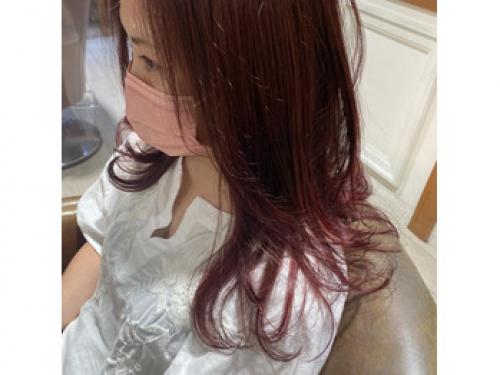 赤系 秋カラー